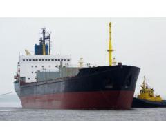 Arctic bulker - container ship DWT 23 000 t.